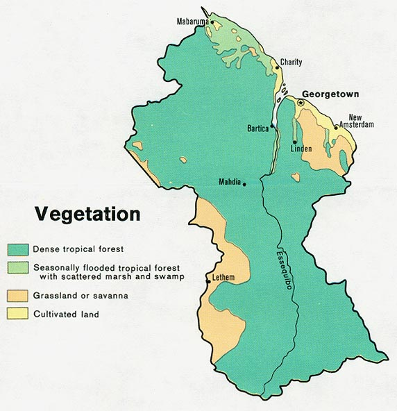 Geography And Environment Guyana - Guyana physical map